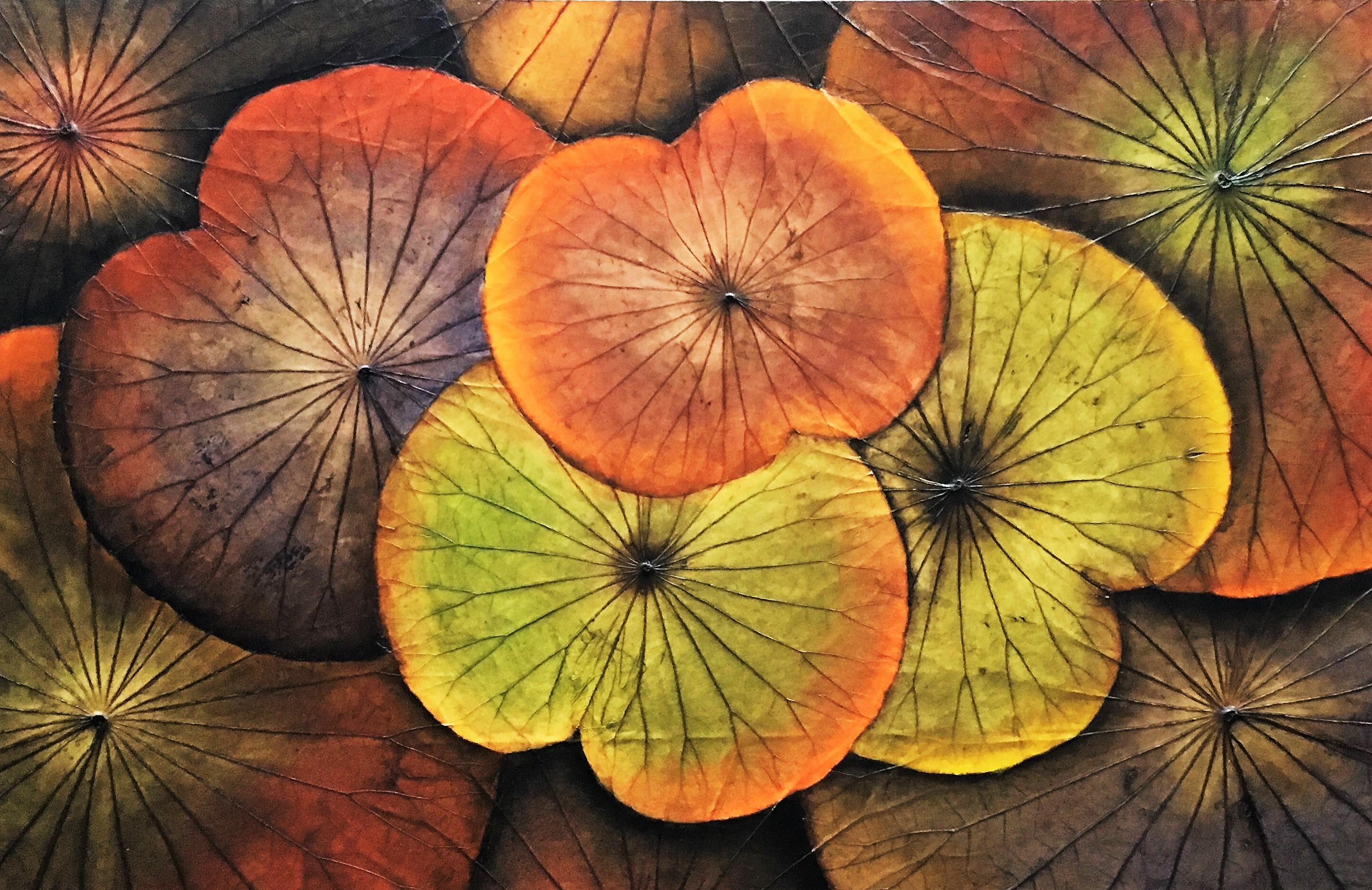 Lotus-Herbst